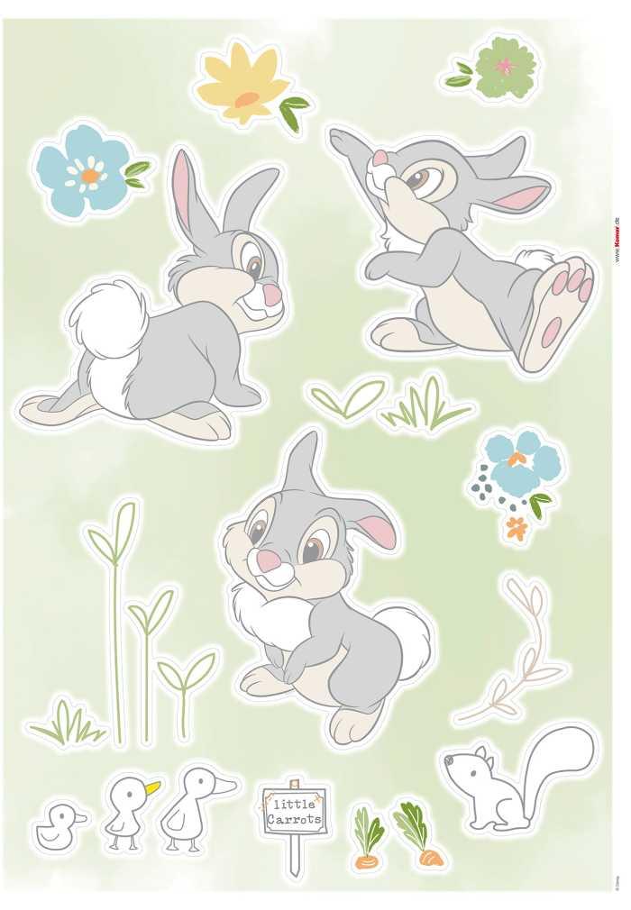 Wandtattoo Thumper in the Garden