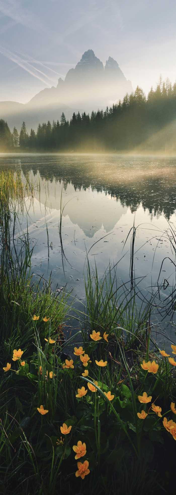 Panel Morning Mist
