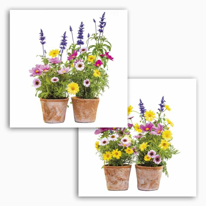 Fenstersticker Springtime