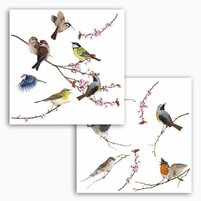Fenstersticker Birds