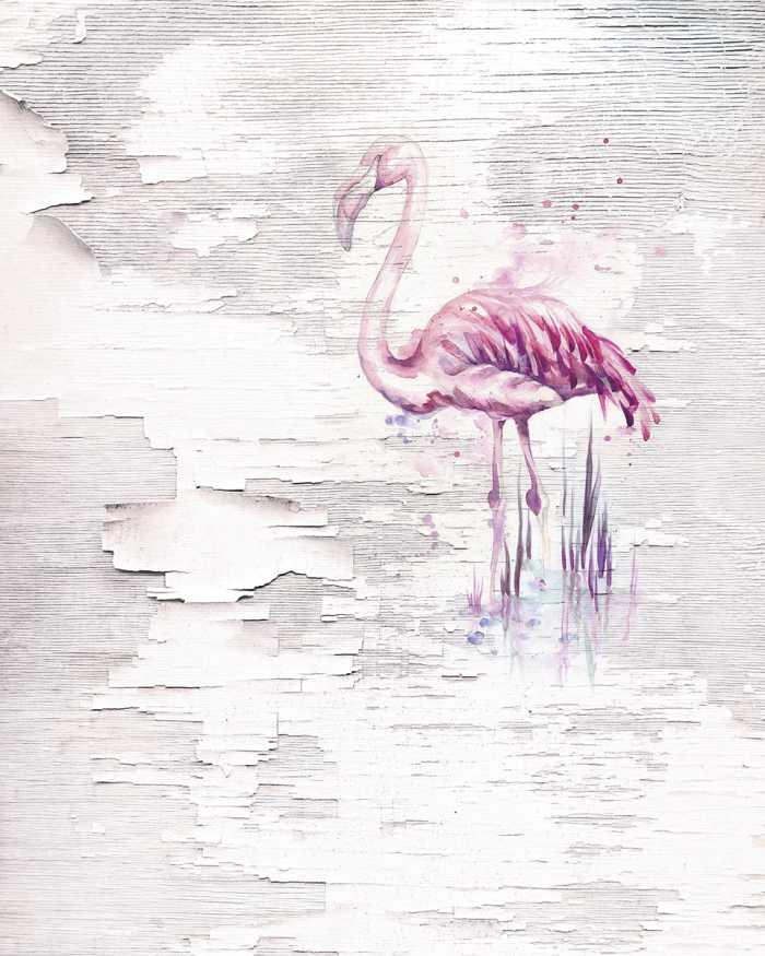 Digitaldrucktapete Pink Flamingo