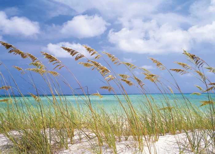 Fototapete Ocean Breeze