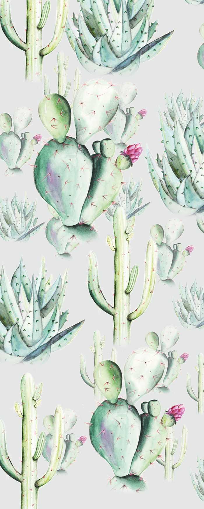 Digitaldrucktapete Cactus Grey