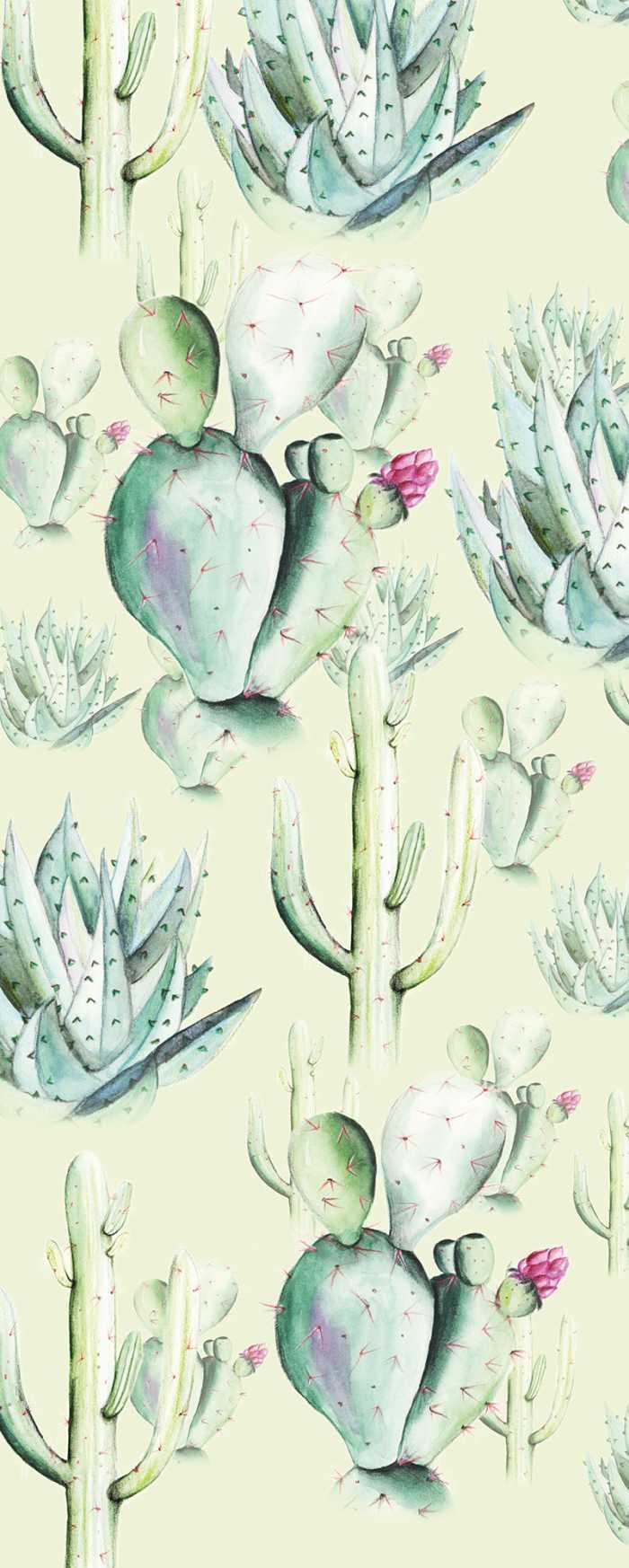 Digitaldrucktapete Cactus Green