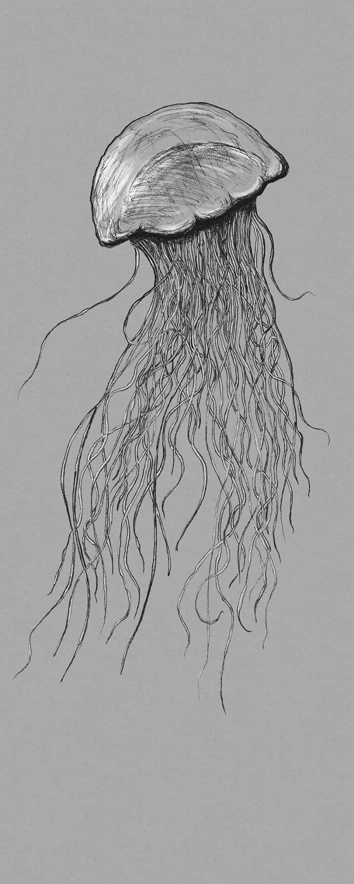 Digitaldrucktapete Jellyfish
