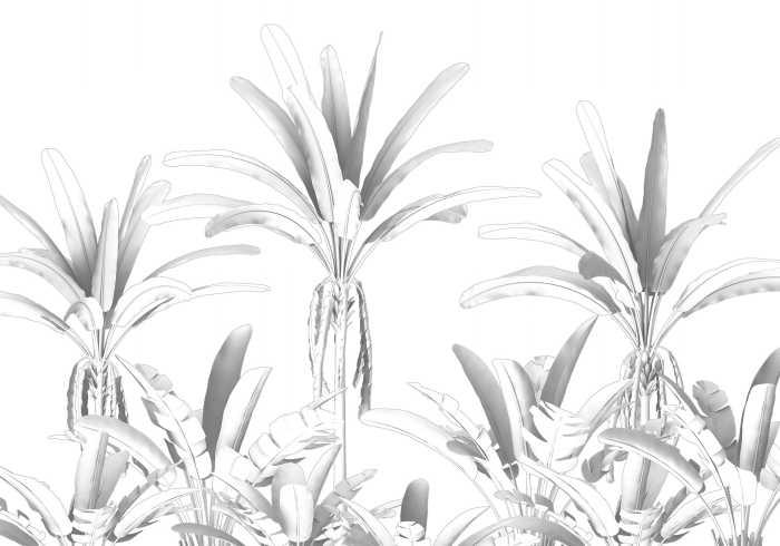 Digitaldrucktapete Musa