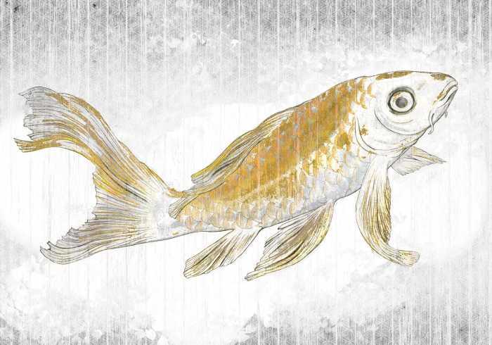 Digitaldrucktapete Golden Koi