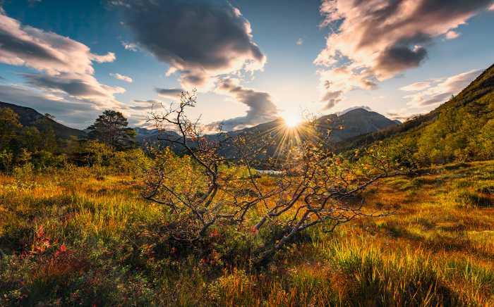 Digitaldrucktapete Norwegische Herbstwelten