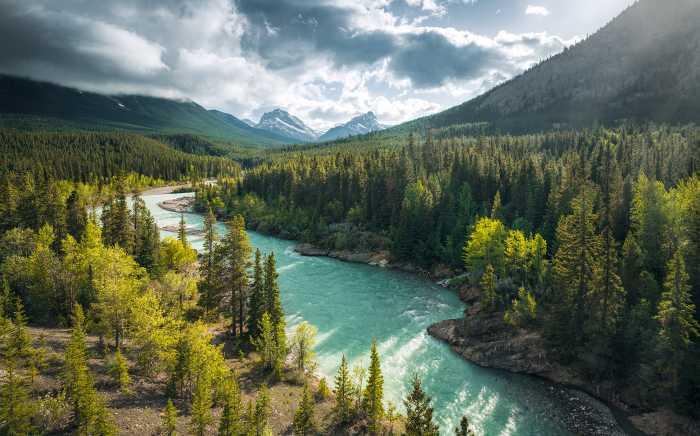 Digitaldrucktapete Wild Canada