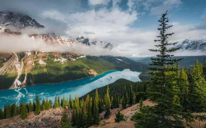 Digitaldrucktapete Wonderland Canada