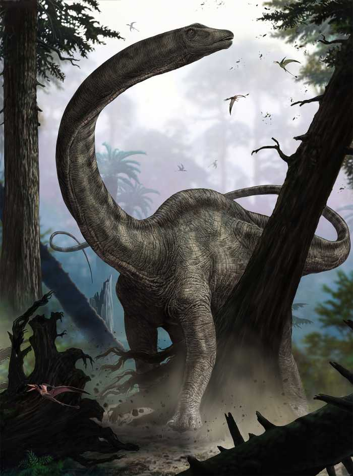 Vliestapete Rebbachisaurus
