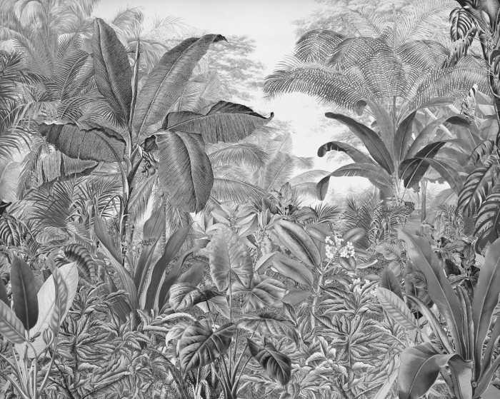 Digitaldrucktapete Roraima