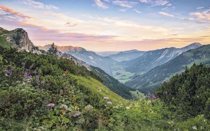Digitaldrucktapete Alps