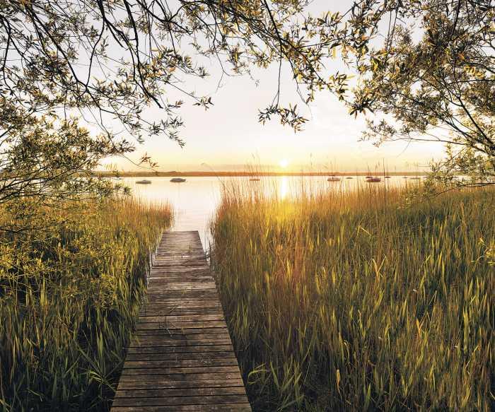 Digitaldrucktapete Lakeside