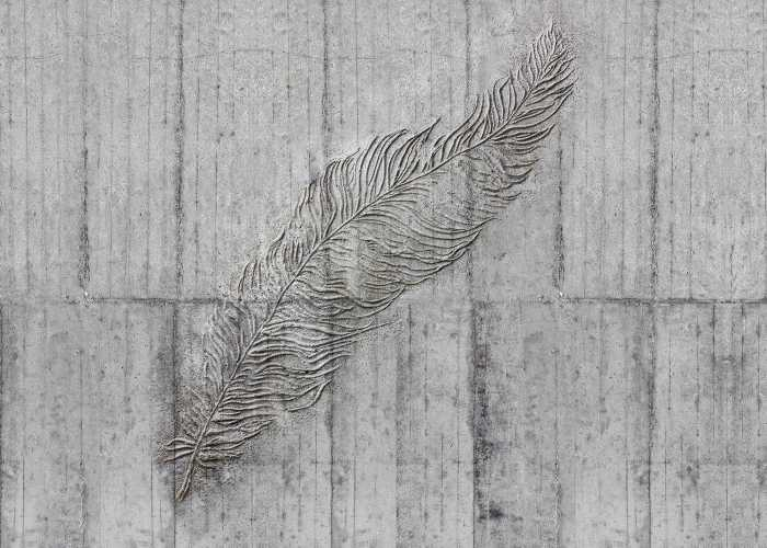 Digitaldrucktapete Concrete Feather
