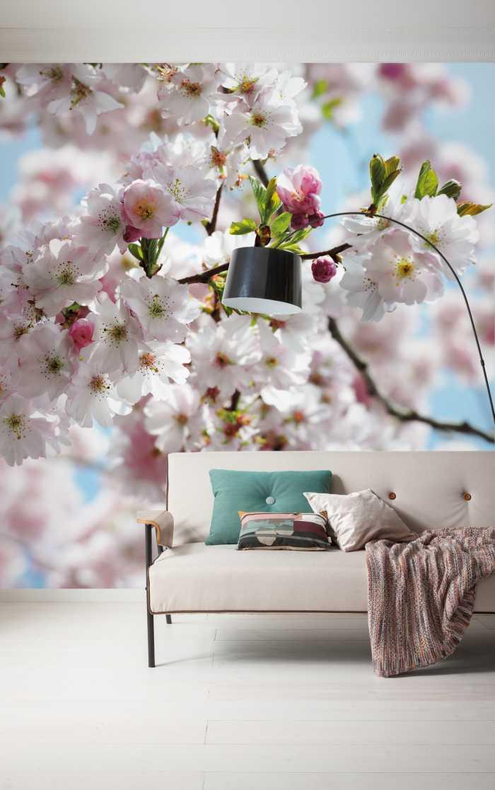 Bunte Blumen Fototapete Spring mit Kirschblüten Motiv