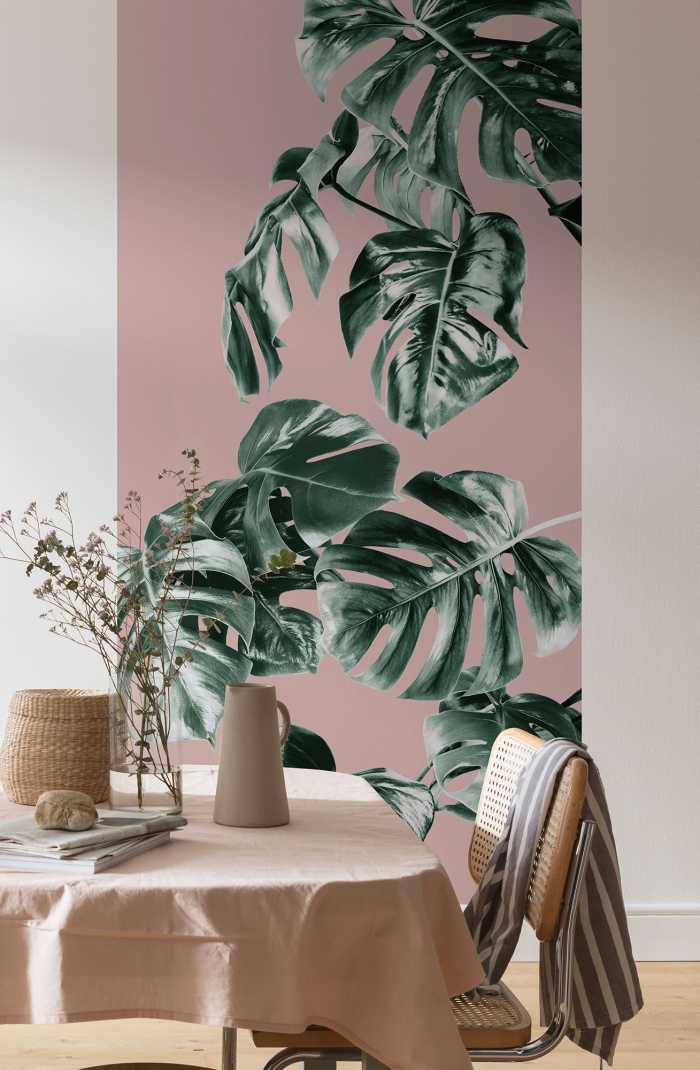 Digitaldrucktapete Monstera Rosé
