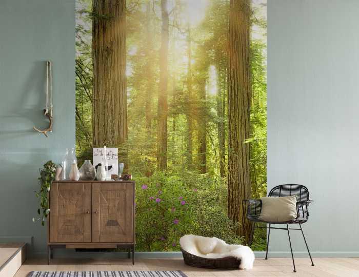 wald vliestapeten jetzt online kaufen. Black Bedroom Furniture Sets. Home Design Ideas