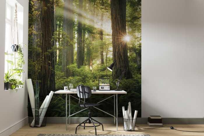 Digitaldrucktapete Goblins Woods
