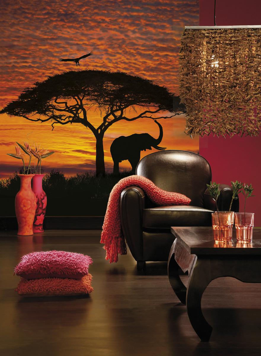 fototapete african sunset von national geographic. Black Bedroom Furniture Sets. Home Design Ideas