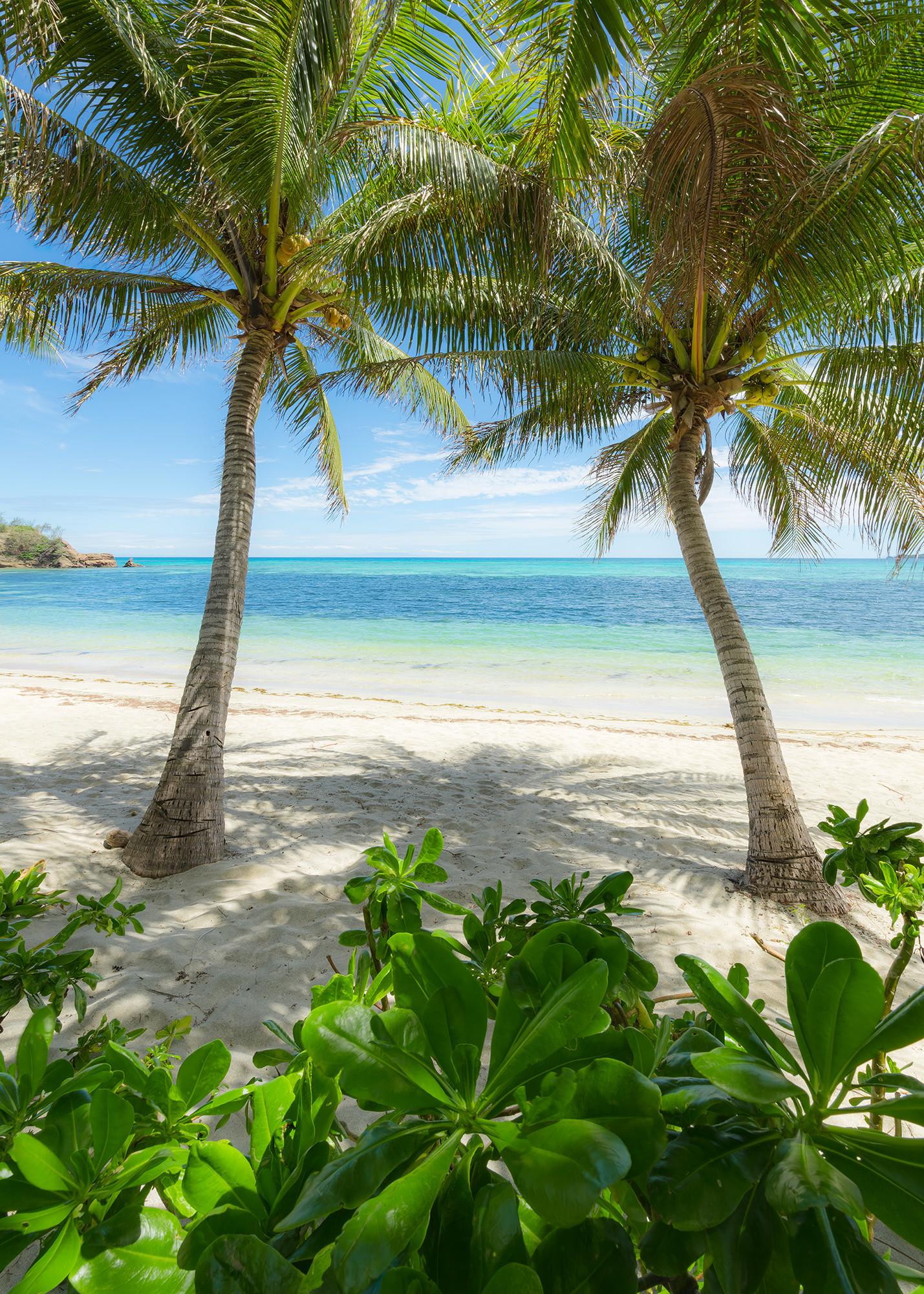 Palmy Beach