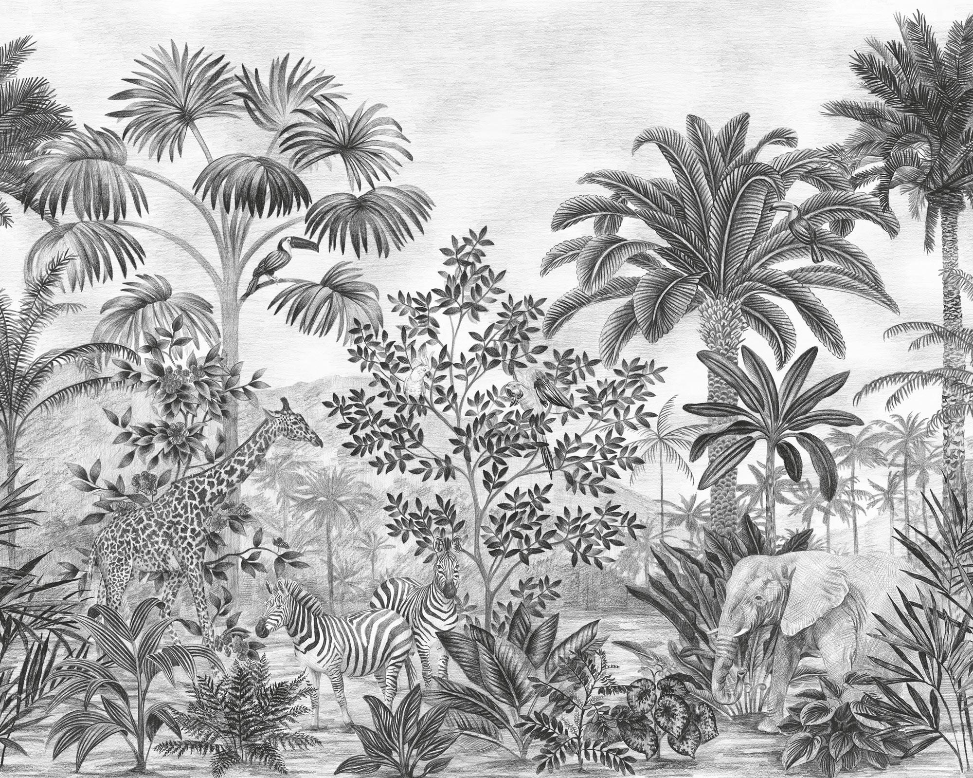 Jungle Evolution