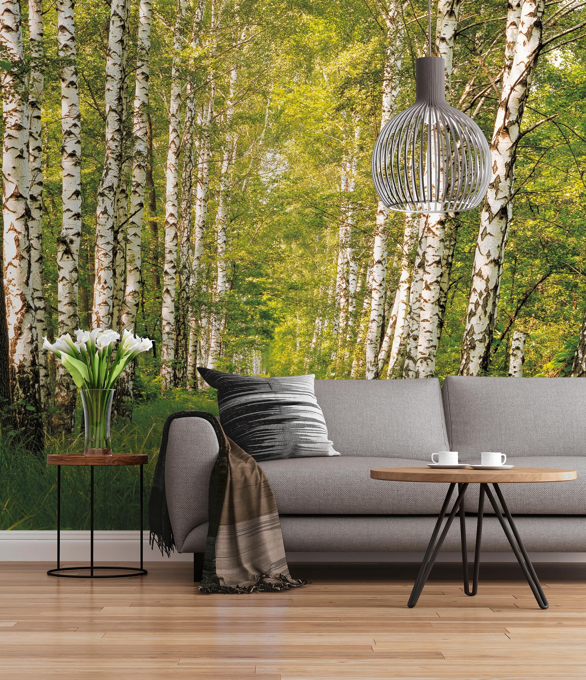 fototapeten und wandtattoos von hochwertig und g nstig von komar disney star. Black Bedroom Furniture Sets. Home Design Ideas